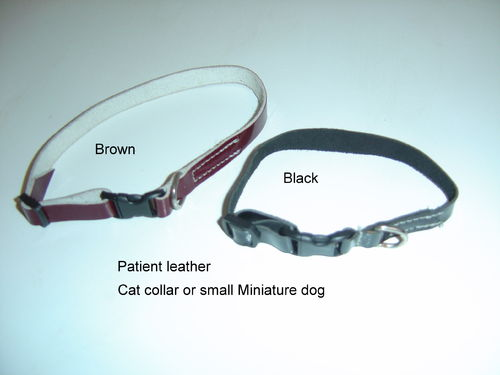 Cat Collar or small miniature dog